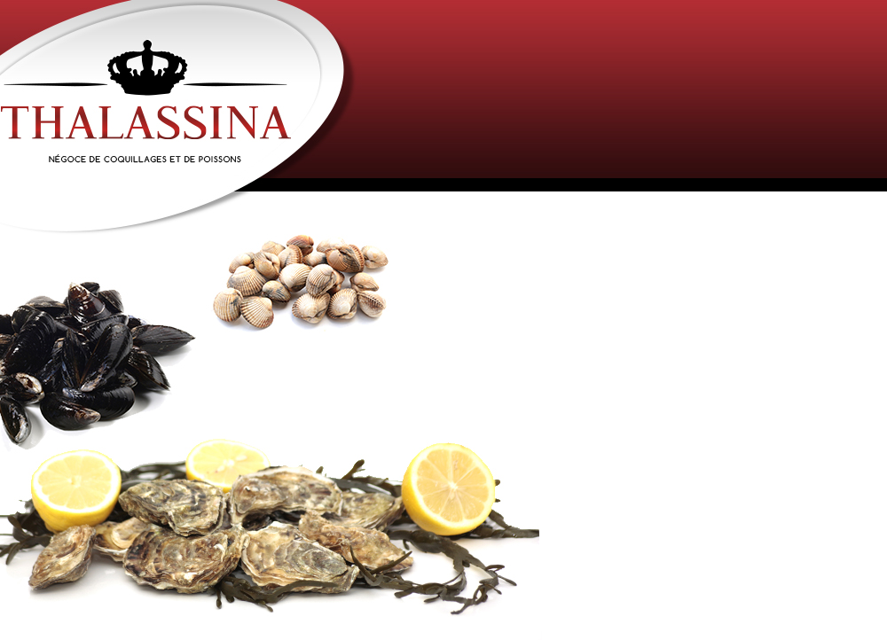 Eleveur de moules : vente fruits de mer - Thalassina